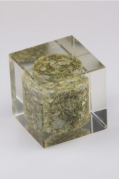 Acryl kubus